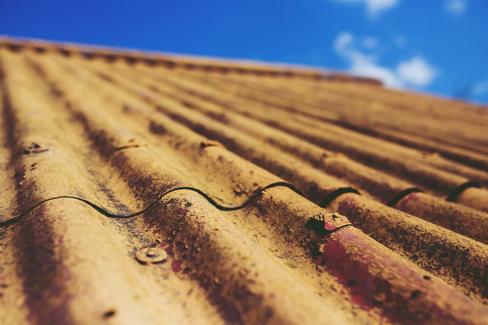 Roof under examination by Nelson house inspectors