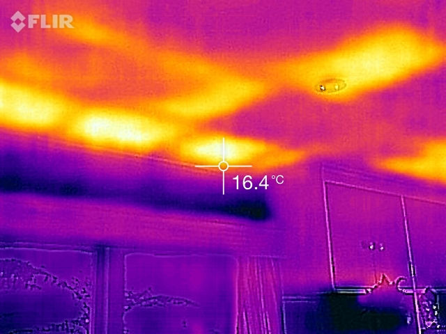 pre purchase thermal imaging